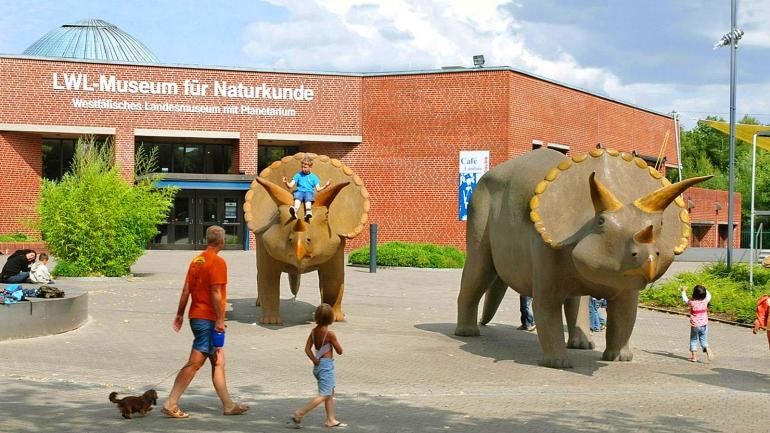 Naturkundemuseum Münster beauftragt INBL mit der …